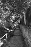 Dlouhé schody